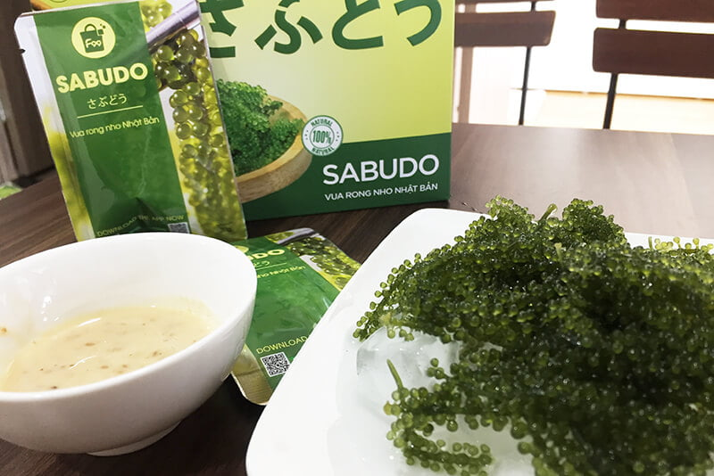 Nên mua rong nho tách nước loại nào tốt giữa Okinawa và Sabudo (1)